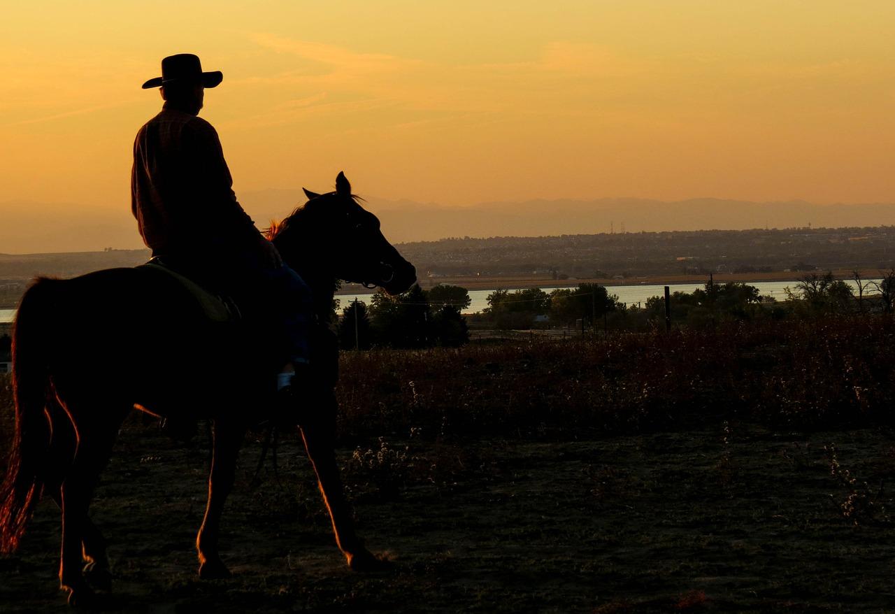 cowboy-283449_1280